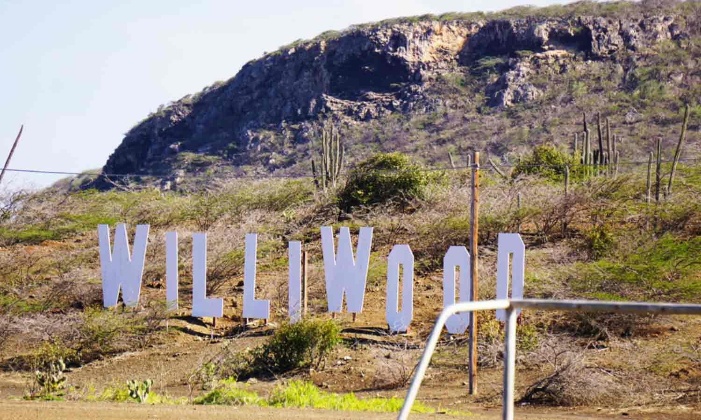 willibrordus williwood sign
